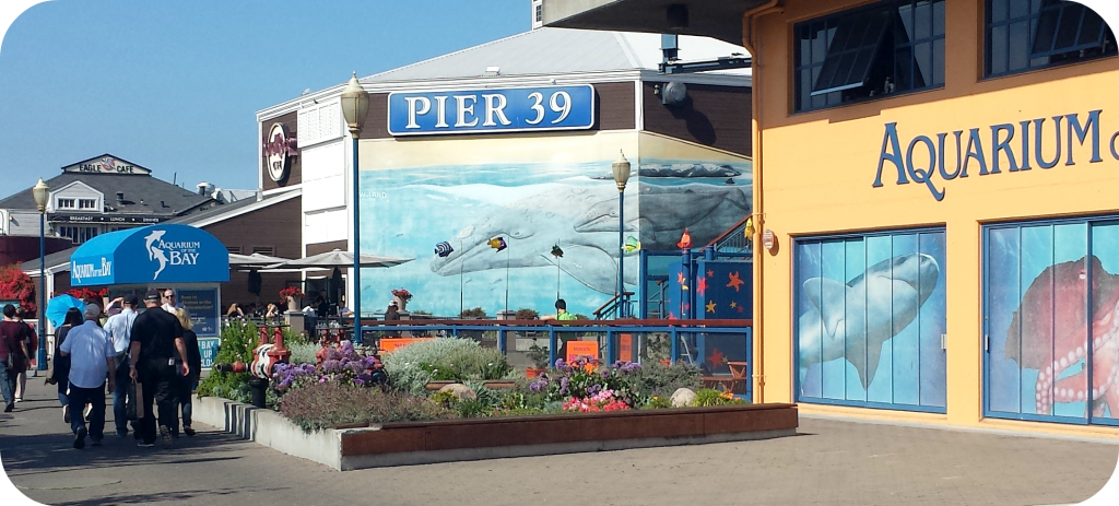 San Fran Pier 39