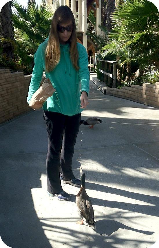 Me feeding a duck